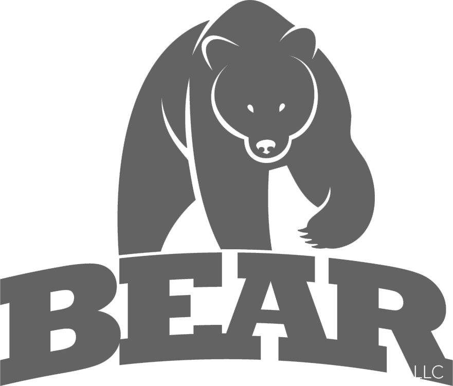 BEAR Consulting Services